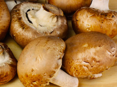 mushrooms_crimini